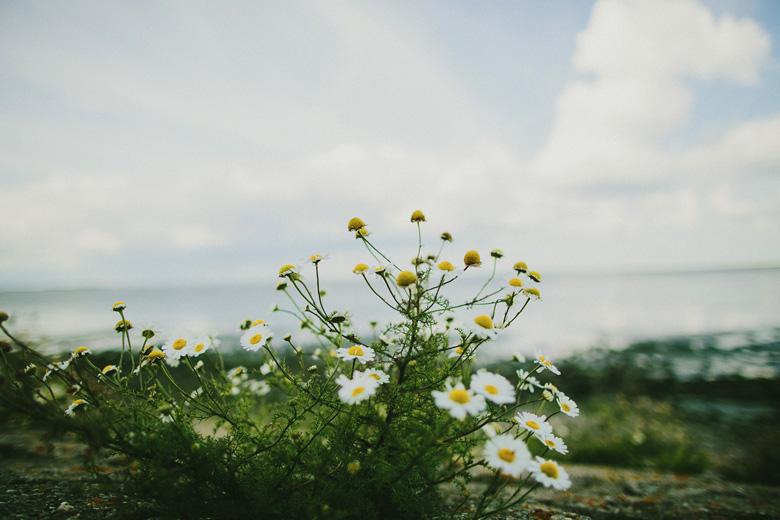 zeeland_2014_037