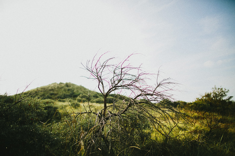zeeland_2014_125